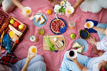Group of humans with drinks gathered by dinner on picnic cloth Wall mural