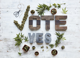 Wooden letters with marijuana leaves and buds on table