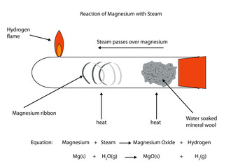 Fully labelled illustration of magnesium reaction with steam