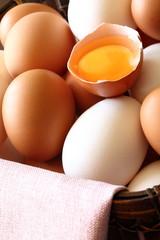 たまご Hen's egg