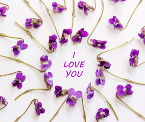 Inscription I love you in a frame of small forest flowers purple on a white background. Flat lay, top view