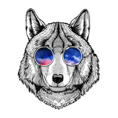 Hippie, hipster Wolf wearing glasses Image for tattoo, logo, emblem, badge design