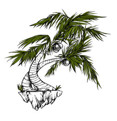 Beautiful palm on the white background. Coconut tree. Nice tropical illustration. Creative author image.