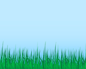 grass illustrator vector