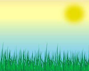 grass illustrator vector with sun