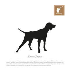 Black silhouette of a hunting dog on a white background