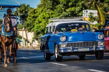 Garden Poster Cars from Cuba Blau weißer Oldtimer mit einer Pferdekutsche in Varadero Kuba - Serie Kuba Reportage