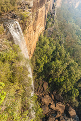 Fototapete - Fitzroy Falls