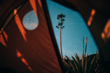 Starry sky view from tent
