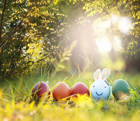 Rabbit and colorful Easter eggs in nature.Easter concept background.
