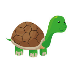 cute turtle pet isolated icon vector illustration design