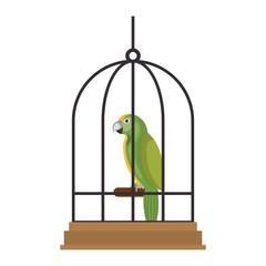 cute bird parrot in cage mascot vector illustration design