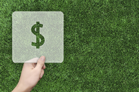 Dollar symbol message box with green grass background