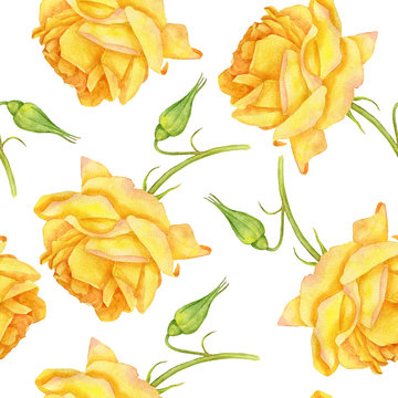 seamless pattern with watercolor yellow roses