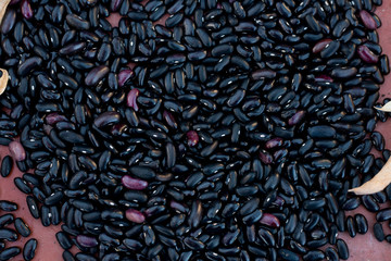 Black Turtle Beans for Backgrounds