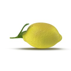 Lemon. Fruit with leaves isolated on white. Side view. 3D illustration