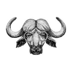 Buffalo wearing glasses Image of bison, bull, buffalo for tattoo, logo, emblem, badge design