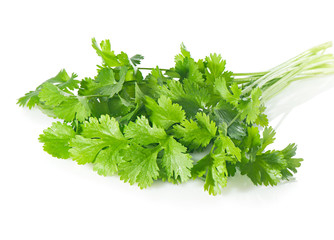 Fresh coriander leaves on  white.