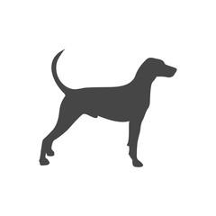 Dog icon flat - Illustration