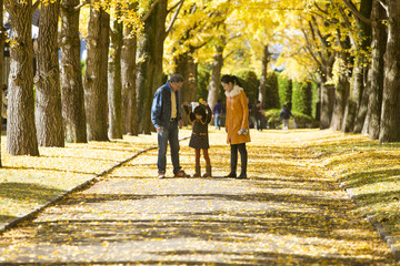 Family in park, Ginkgo biloba leaves on the road
