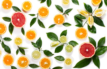 Wall Mural - Background of citrus fruits