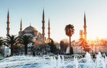 Illuminated Sultan Ahmed Mosque Blue  before sunrise, Is