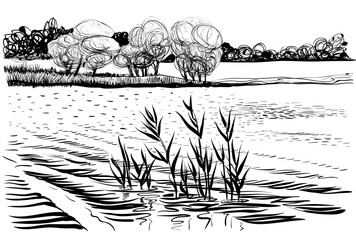 Vector illustration of river landscape with cattail and trees.