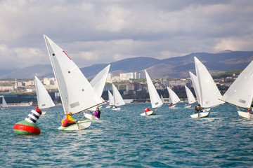 sailing Regatta on sea