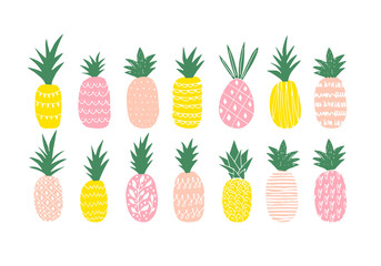 The vector illustration of the variety of different colored pineapples.