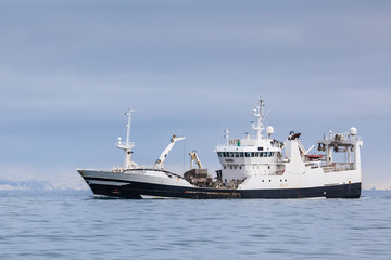 Pelagic fishing vessel fully loaded with Capelin sailing near the coast of Iceland.