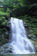 Waterfall at Isiutoro ravine, Yamanashi Prefecture Honshu, Japan