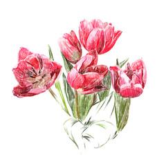 Kwiaty. Czerwone tulipany.