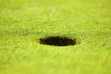 Close-up of hole on putting green