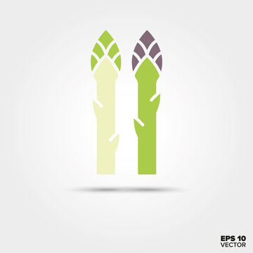 green and white asparagus vegetable vector icon