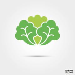 lettuce leaf vegetable vector icon