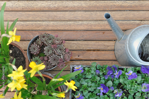 Pots de fleurs et arrosoir sur plancher en bois d 39 une terrasse stockfotos und lizenzfreie - Foto terrasse bois ...