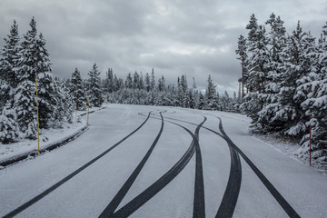 Tire tracks on snow covered field against trees