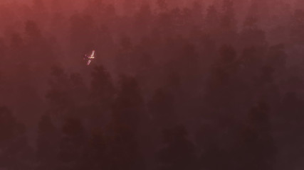 Private airplane over pine forest in mist at night.