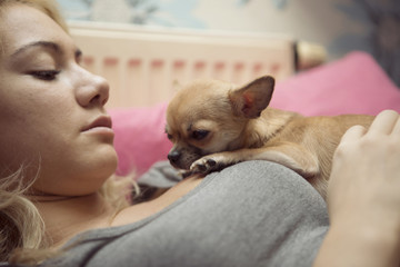 Close-up of teenage girl playing with Chihuahua while lying on bed