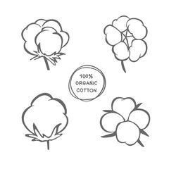 Vector set of hand draw ink cotton plant. Cotton icons illustration set. Can be used as logo, labels, stickers and emblems. Doodle branch of cotton. Sketch.