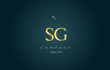 sg s g  gold golden luxury alphabet letter logo icon template