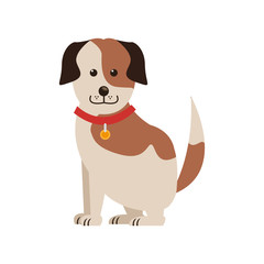 dog cartoon icon over white background. colorful design. vector illustration