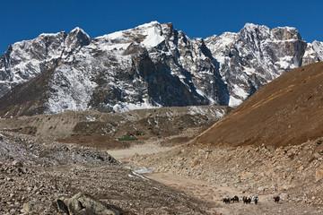 The village of Gorak Shep and yak caravan - Nepal