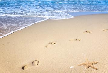 Wall Mural - Fußspuren im Sand an einem goldenen Strand mit Seestern am Meer