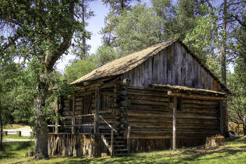 Rough Hewn Log Cabin in the Woods