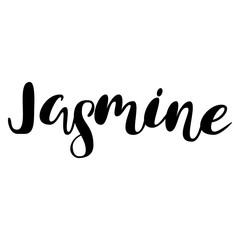 Female name - Jasmine.  Lettering design. Handwritten typography. Vector
