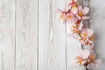 art Spring Blooming spring flowers on wooden background