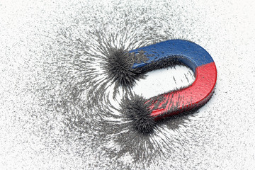 Red and blue horseshoe magnet or physics magnetic with iron powder magnetic field on white background. Scientific experiment in science class in school.