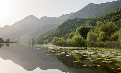 Quiet waters of Lake Skadar in Montenegro