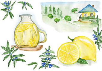 Summer holiday in the village / watercolor sketch landscape and objects - lemon, Dracocephalum and lemonade